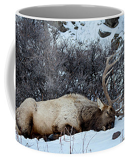 Coffee Mug featuring the photograph Sleeping Elk by Michael Chatt