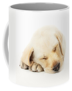 Sleeping Labrador Puppy Coffee Mug
