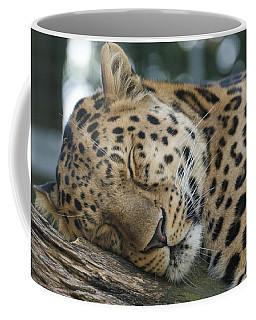 Sleeping Leopard Coffee Mug