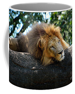 Coffee Mug featuring the photograph Thinking Lion by Lisa L Silva