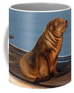 Sleeping Wild Sea Lion Pup  Coffee Mug