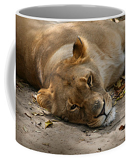 Sleepy Lioness Coffee Mug