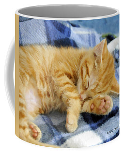 Coffee Mug featuring the photograph Sleepy Time by Kenny Francis