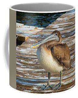 Sleepytime Pelican II Coffee Mug