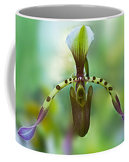 Slipper Orchid Of Selby Gardens Coffee Mug