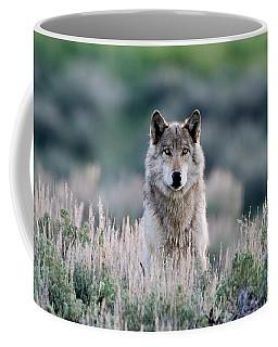 Slough Alpha Coffee Mug