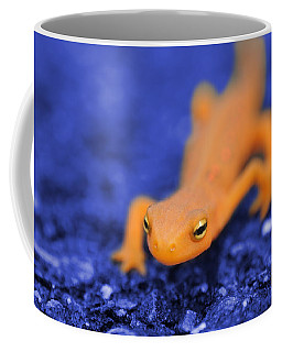 Sly Salamander Coffee Mug