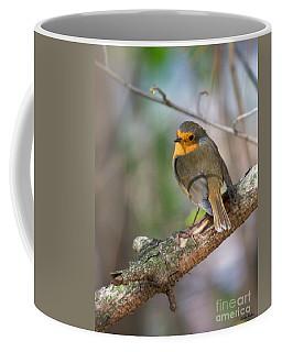 Small Bird Robin Coffee Mug