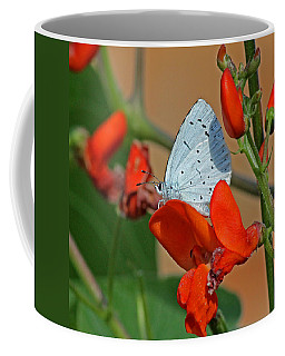 Small Blue Butterfly Coffee Mug