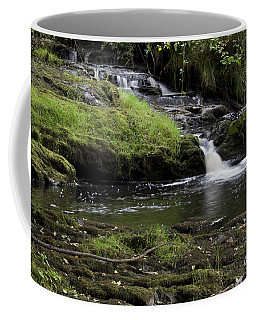 Small Falls On West Beaver Creek Coffee Mug
