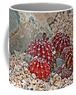 Small Red Cactus Coffee Mug