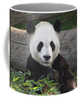 Smiling Giant Panda Coffee Mug