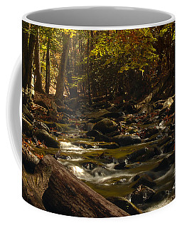 Smoky Mountain Stream Coffee Mug by Patrick Shupert