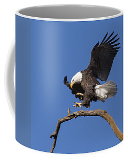 Smooth Landing 6 Coffee Mug