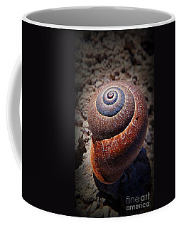 Snail Beauty Coffee Mug by Clare Bevan