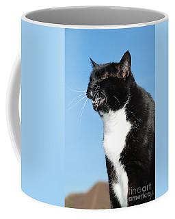 Sneezing Cat Coffee Mug