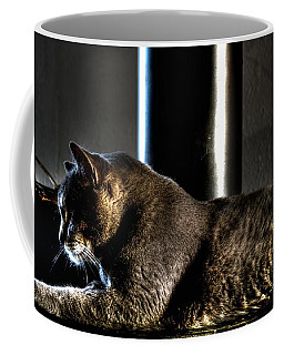 Snitten's Evening Light Coffee Mug