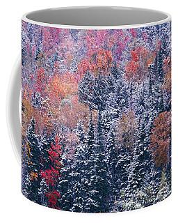 Snow And Autumn Trees, Adirondack Coffee Mug
