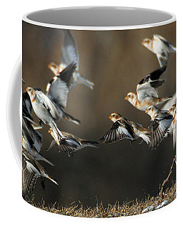 Coffee Mug featuring the photograph Snow Buntings Taking Flight by William Selander