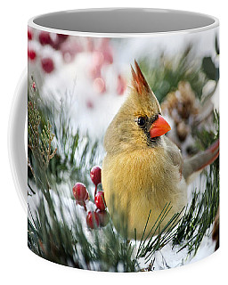 Coffee Mug featuring the photograph Snow Cardinal by Christina Rollo