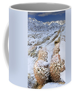Coffee Mug featuring the photograph Snow Covered Cactus Below Mount Whitney Eastern Sierras by Dave Welling
