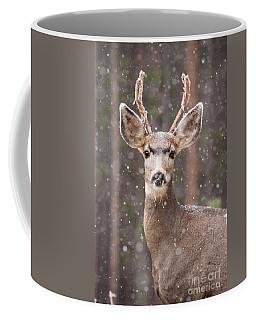 Snow Deer 1 Coffee Mug