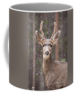 Snow Deer 1 Coffee Mug