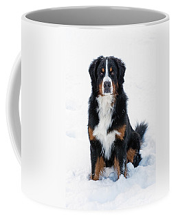 Snow Dog II Coffee Mug