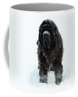 Snow Dog Coffee Mug