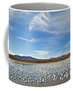 Coffee Mug featuring the photograph Snow Geese Bosque Del Apache  by Yva Momatiuk John Eastcott