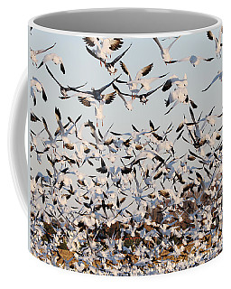 Snow Geese Takeoff From Farmers Corn Field. Coffee Mug