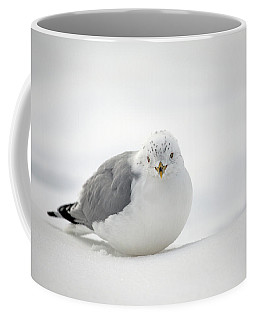 Snow Gull Coffee Mug by Karol Livote