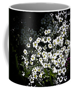 Coffee Mug featuring the photograph Snow In Summer by Joann Copeland-Paul