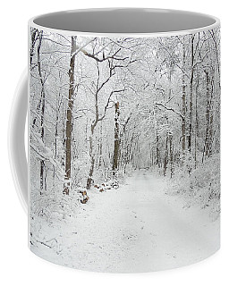 Snow In The Park Coffee Mug
