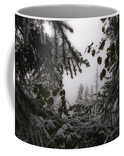 Snow In Trees At Narada Falls Coffee Mug