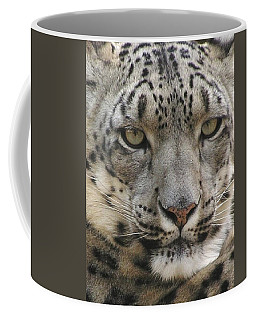 Coffee Mug featuring the photograph Snow Leopard by Diane Alexander