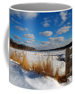 Coffee Mug featuring the photograph Snow Marsh by Dianne Cowen