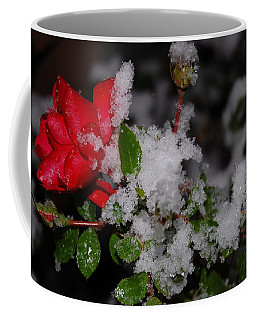 Coffee Mug featuring the photograph Snow Rose by Mim White