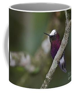 Snowcap.. Coffee Mug