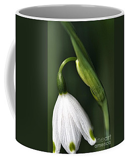 Coffee Mug featuring the photograph Snowdrop by Joy Watson