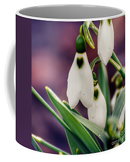 Snowdrops Coffee Mug by Kerri Farley