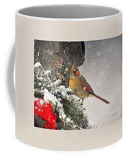 Female Cardinal Snowing Coffee Mug