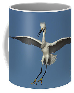 Coffee Mug featuring the photograph Snowy Egret Photo by Meg Rousher