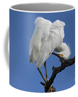 Coffee Mug featuring the photograph Snowy Egret Photograph by Meg Rousher