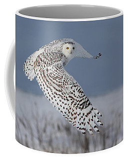 Snowy In Action Coffee Mug