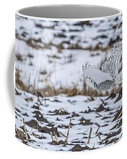 Snowy Owl 2014 6 Coffee Mug