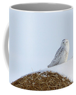 Coffee Mug featuring the photograph Snowy Owl by Alyce Taylor