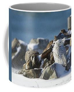 Snowy Owl On A Rock Pile Coffee Mug