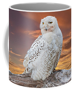 Snowy Owl Perched At Sunset Coffee Mug