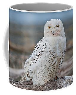 Snowy Owl Watching From A Driftwood Perch Coffee Mug